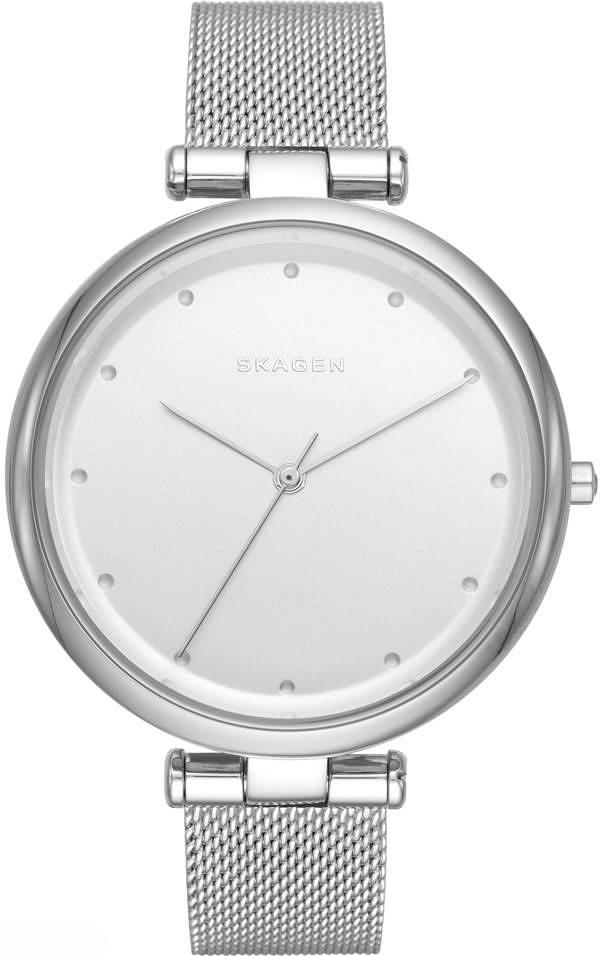 Zegarek damski Skagen tanja SKW2485 - duże 1